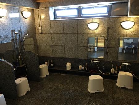上野「天然鴎外温泉」