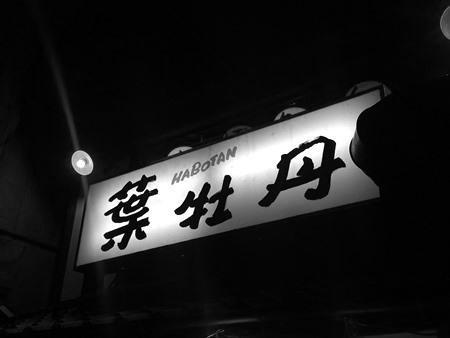高知「葉牡丹」